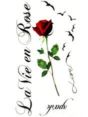 Бодиарт La vie en rose one size Красный+черный Черный
