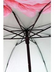 Зонт Шинед