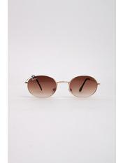 Солнцезащитные очки RB3547 Коричневый