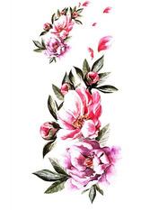 Бодиарт Розы центифолии