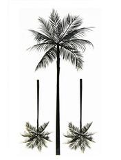 Бодиарт Пальмы